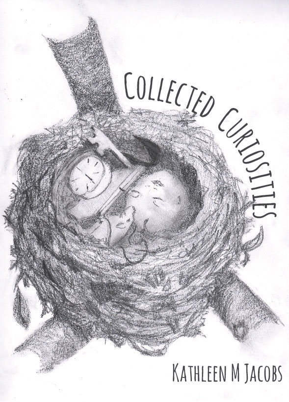 Collected Curiosities by Kathleen M. Jacobs, designed by Anna Hartman, Creative